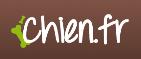 Logo cane corso chien.fr