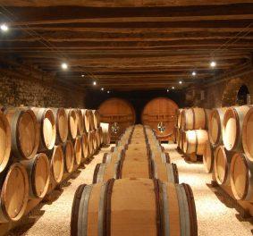 Quelle cave a vin pour une bonne saveur?