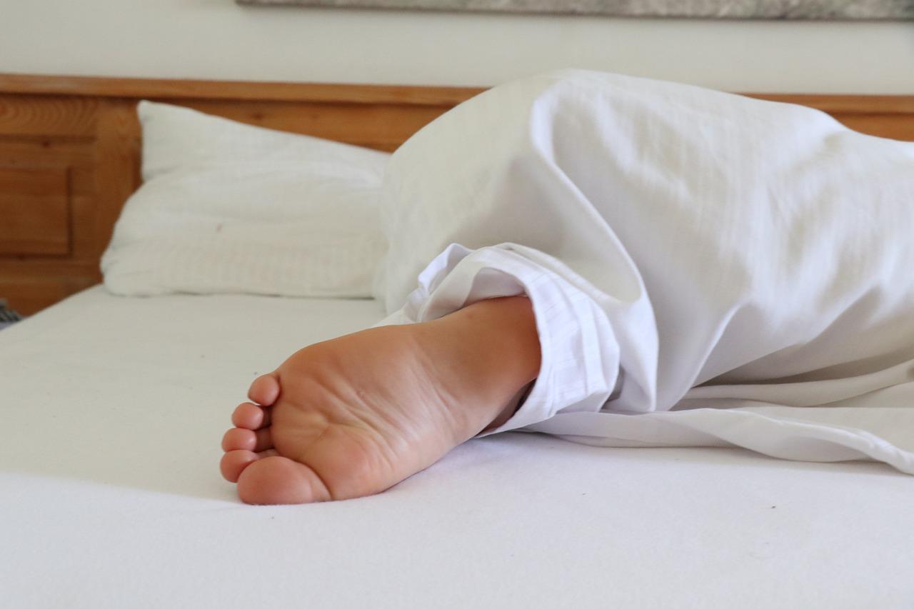 Comment exterminer les punaises de lit